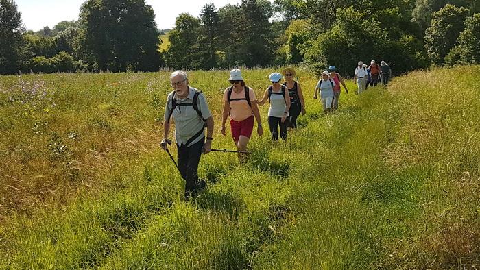 2019 06 23 vers Blandy-les-Tours _02