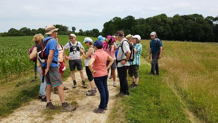 2019 06 23 vers Blandy-les-Tours _18