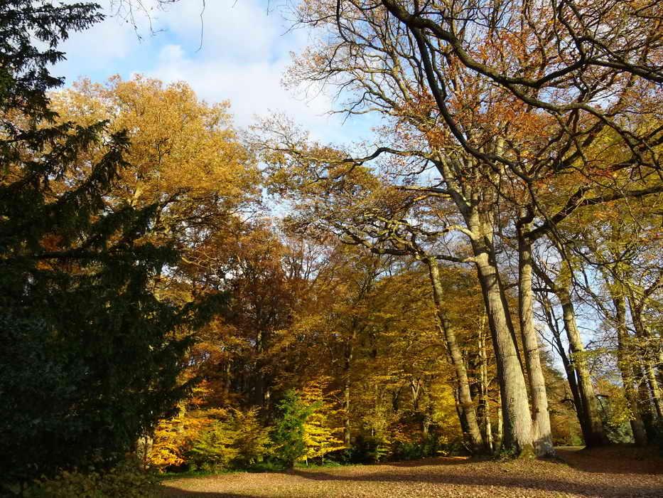 parc du château de Breteuil 3