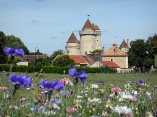 Chateau blandy tours